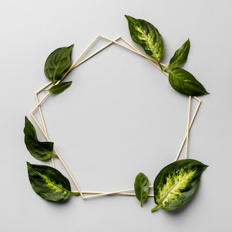 緑の葉フレームの配置