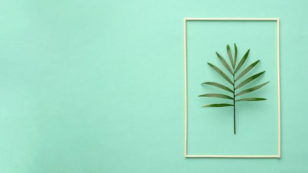 コピースペースのある緑の葉の配置