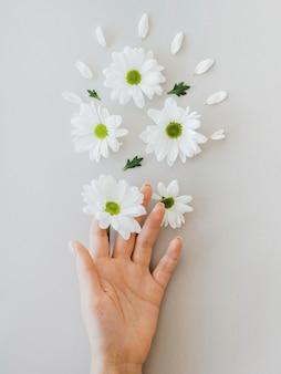 Композиция концепции оптимизма с цветами