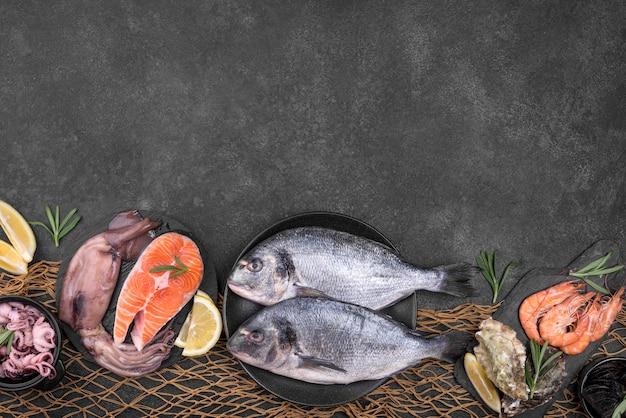 さまざまな種類の魚のコピースペースの配置