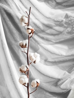 Arrangement with cotton flowers on a branch