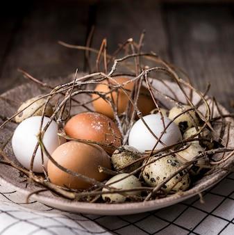 Disposizione con uova e rametti ad alto angolo