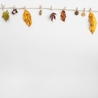 Arrangement with leaves and acorn hanging on clothesline