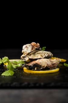 Arrangement with tasty shells and dark background