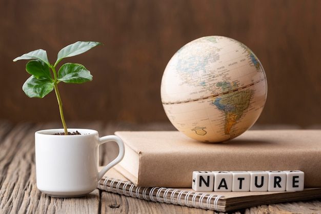 세계 지구본과 식물 배치