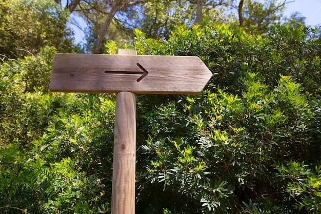 Arrow wooden track blank road sign in mediterranean