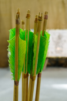 Arrows with natural plumage