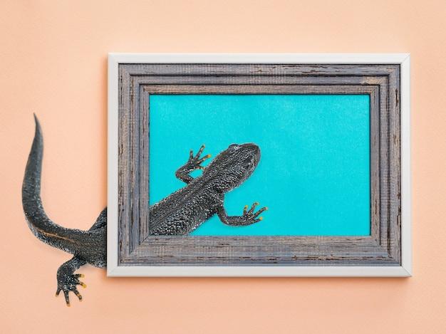 フレームと壁の間を這うアートコラージュ黒トカゲ