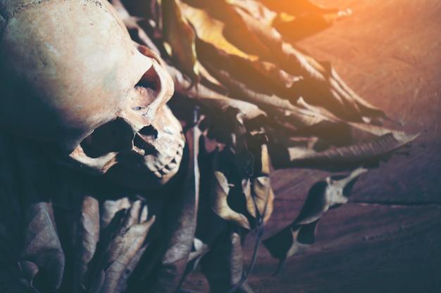 ハロウィーンのコンセプト、ダーク・ヴィンテージ、使用のためのコピースペースのアート写真