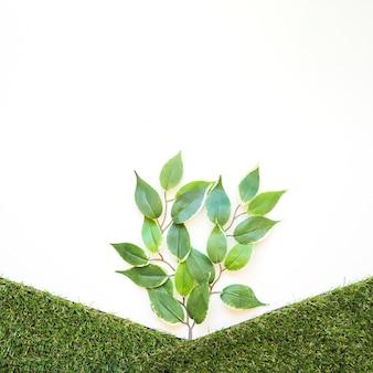 Artificial branch between grass hills