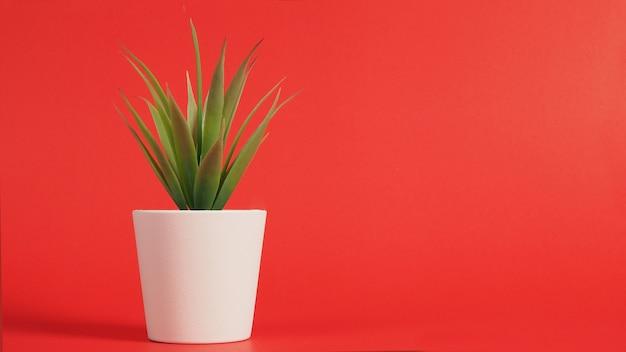 赤い背景で隔離の人工サボテン植物またはプラスチックまたは偽の木。