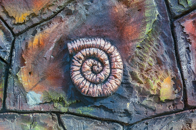 Artificial copy of ancient fossil ammonite