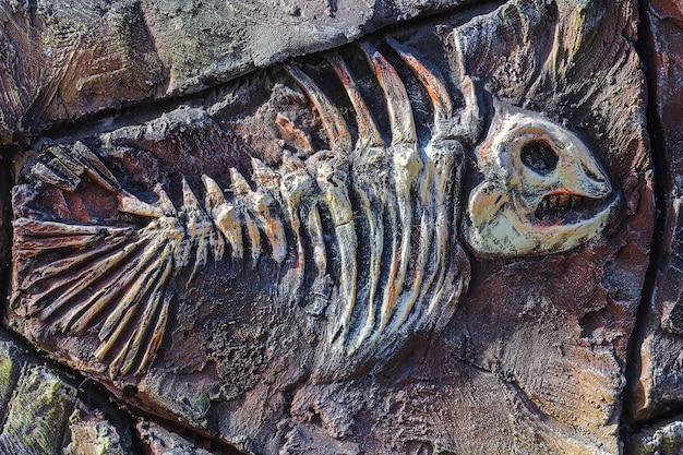 Artificial copy of ancient fossil fish on stone wall of children's paleantological museum.
