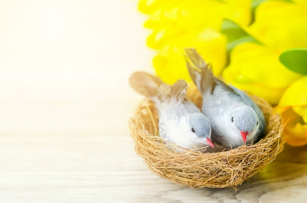 Artificial couple birds with natural nest and yellow tulip flowers