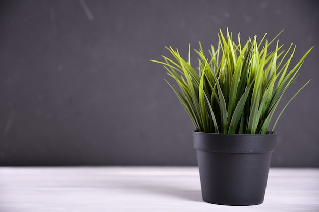 Artificial flowers grass different form in a pot close up with copy space and text