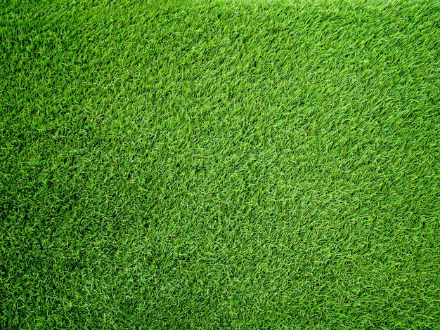 Artificial grass background and texture