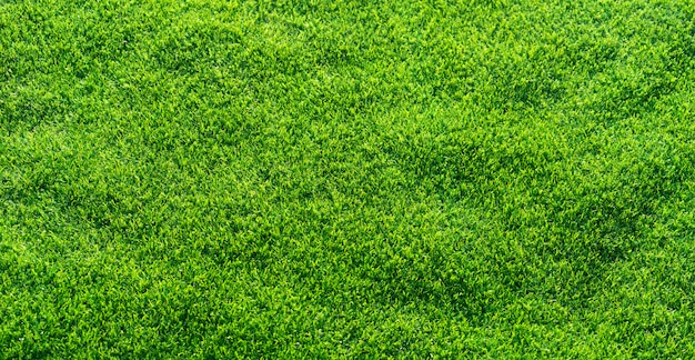 Artificial grass background.