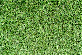 Artificial Grass Vectors Photos and PSD files Free Download