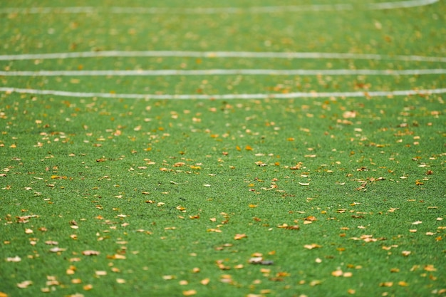 Artificial grass, sports field cover with marking. artificial turf used in different sports: football, soccer, rugby, tennis, baseball, american football, golf, field hockey and other.