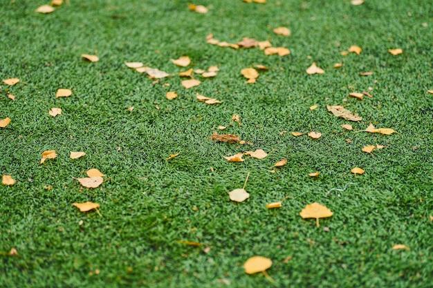 Искусственная трава, покрытие спортивной площадки с разметкой. искусственный газон используется в разных видах спорта: футбол, футбол, регби, теннис, бейсбол, американский футбол, гольф, хоккей на траве и другие.