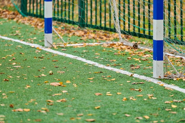 Artificial grass on sports field