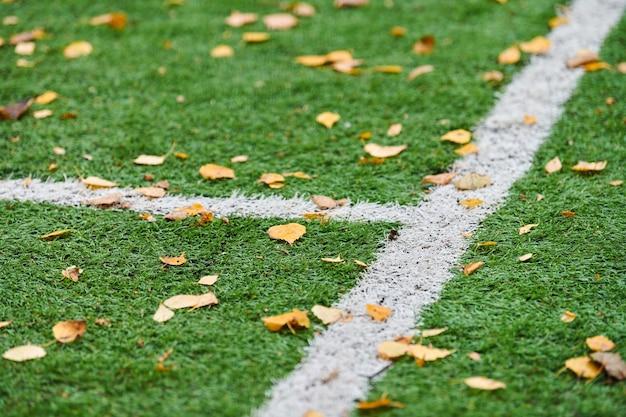 Artificial grass on a sports field
