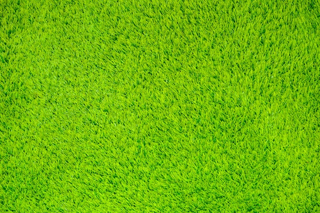 Artificial grass surface for the background.