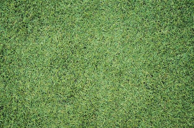 Текстура искусственной травы