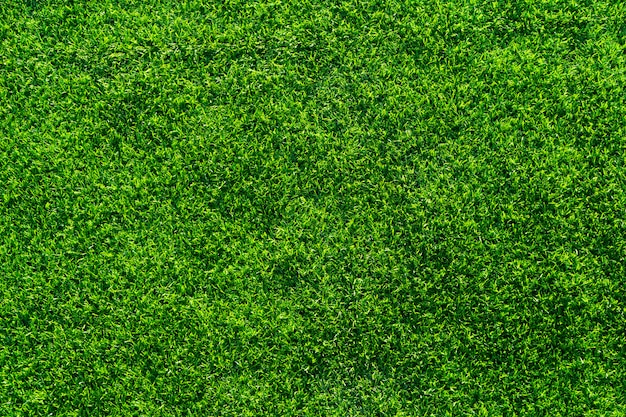 Artificial grass texture