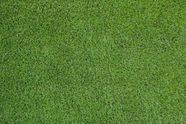 Artificial green grass text and background