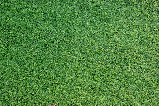 Artificial green grass texture for building indoor and outdoor decoration