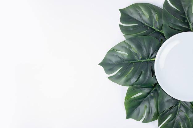 하얀 접시 주위에 인공 녹색 잎.