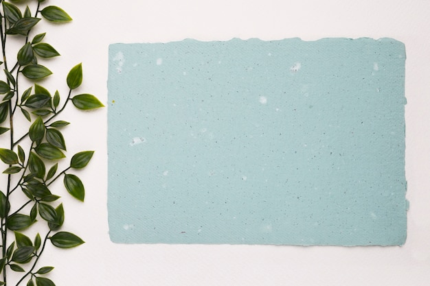 An artificial green plant near the blank blue texture paper on white background
