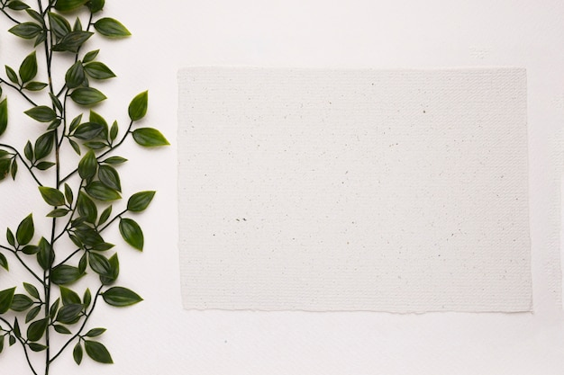 An artificial green plant near the blank paper on white background