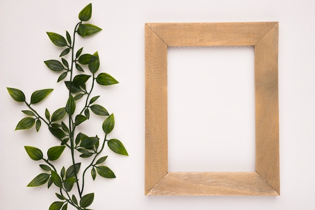 An artificial green plant near the wooden frame on white backdrop