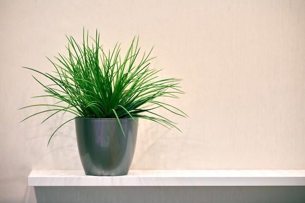 Горшок искусственного зеленого растения на полке, космос экземпляра. пластиковая декоративная флора в доме