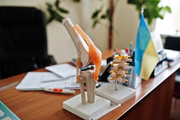 テーブルの上の診療所の人工人間の膝関節モデル。