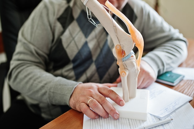 Artificial human knee joint model in medical office on table.