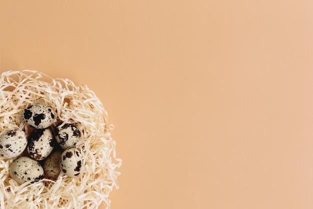 Искусственное гнездо с перепелиными яйцами на бежевом фоне.