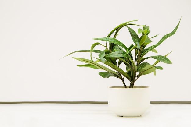 白い壁に白い装飾的なセラミックポットの人工植物