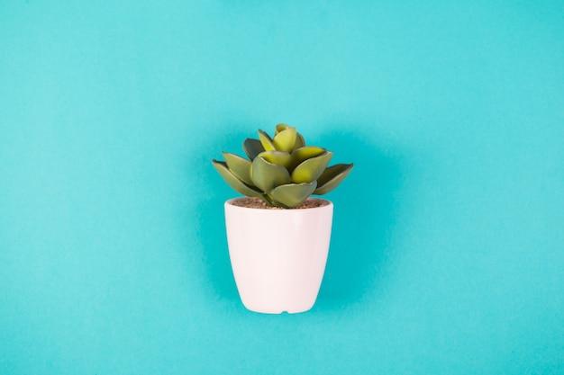 파란색 배경에 흰색 냄비에 인공 식물