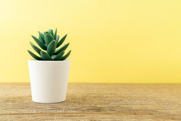 ぼろぼろの木板の人工植物