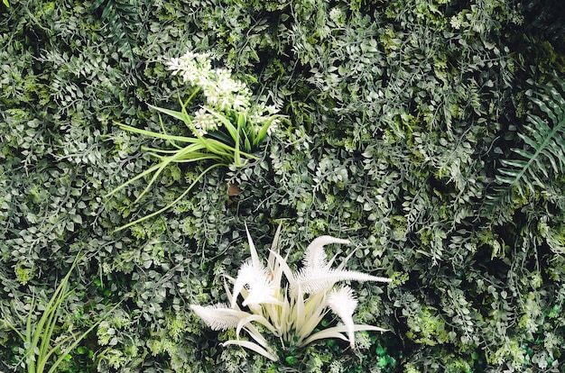 Artificial plants as a backdrop