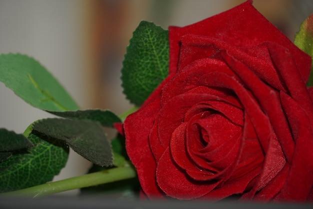 装飾用の人工バラの花