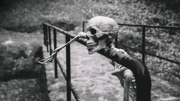 Artificial skeleton looking away resting on parapet