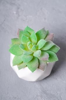 Искусственное суккулентное домашнее растение в горшке