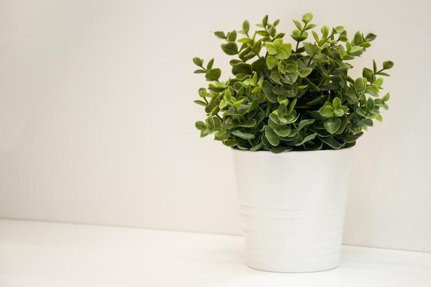 Искусственное суккулентное растение в белом декоративном металлическом ведре на белой стене