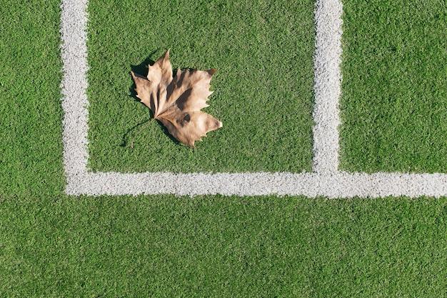 Искусственный газон футбольного поля, угловой маркер.