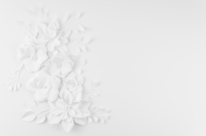 Artistic floral frame with white background