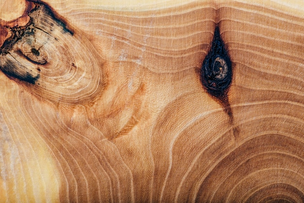 Ash wood slab texture with annual rings, background or wallpaper.